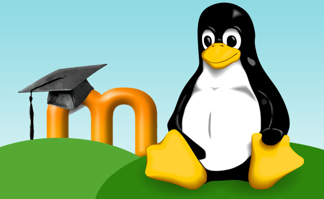 Moodle na domowym serwerze z s.o. Linux