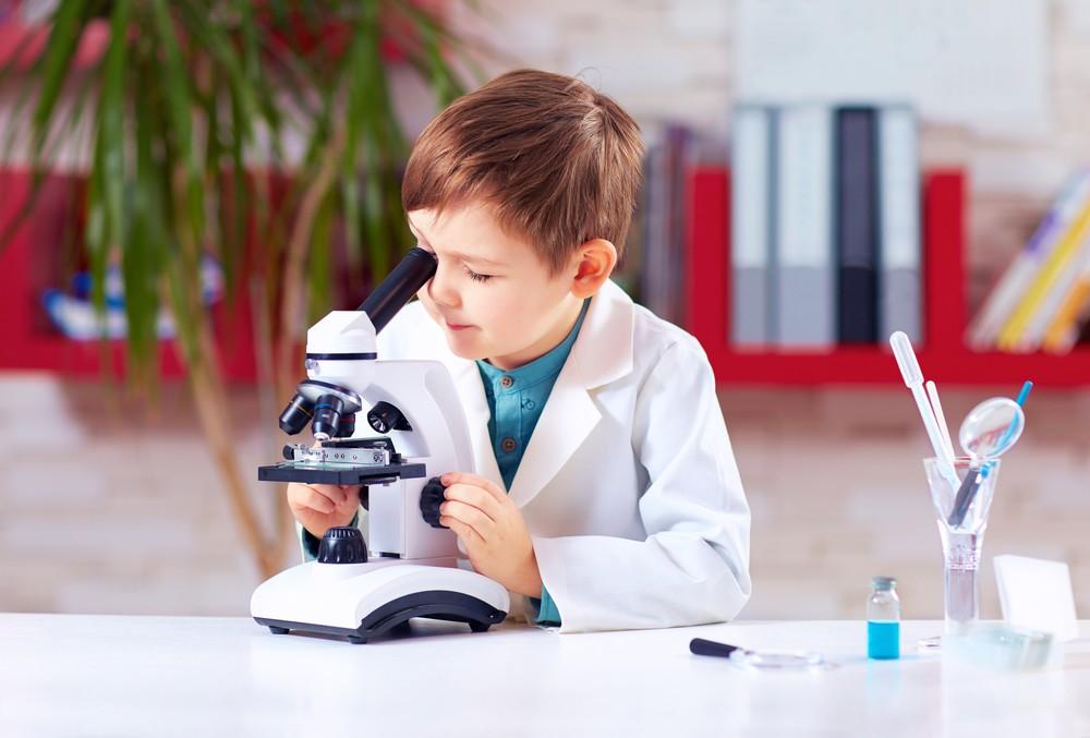 Mikroskop – zobacz niewidzialny mikro świat